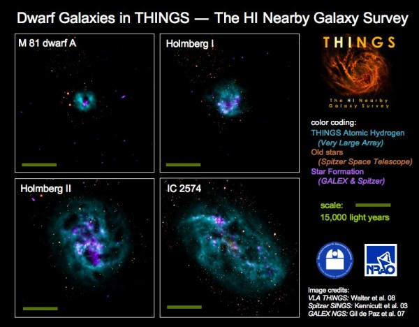 Dwarf galaxies in THINGS