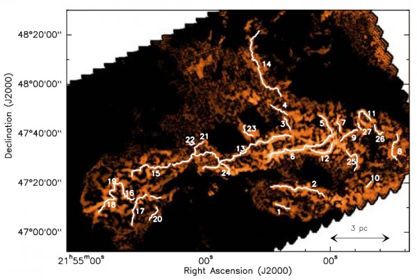 A network of 27 star forming filaments derived from Herschel observations of the IC 5146 molecular cloud.