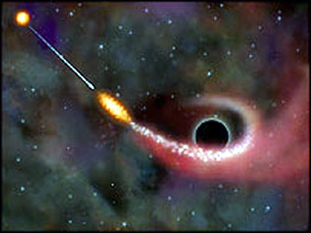 Tidal force of a black hole