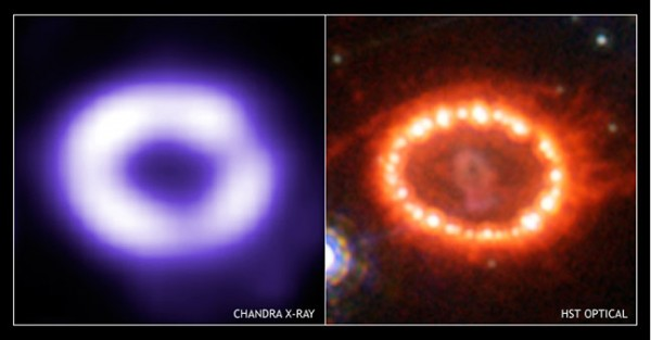 SN1987a ring in x-ray and optical