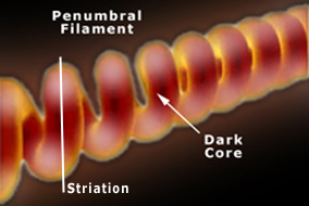 A penumbral filament is a semi-transparent tornadic plasma discharge. Where the filament current density is high it brightens to form moving striations. The darker core is visible only at favorable angles of the filament axis to the observer.
